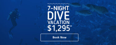 Grand Cayman Dive Sites & Map